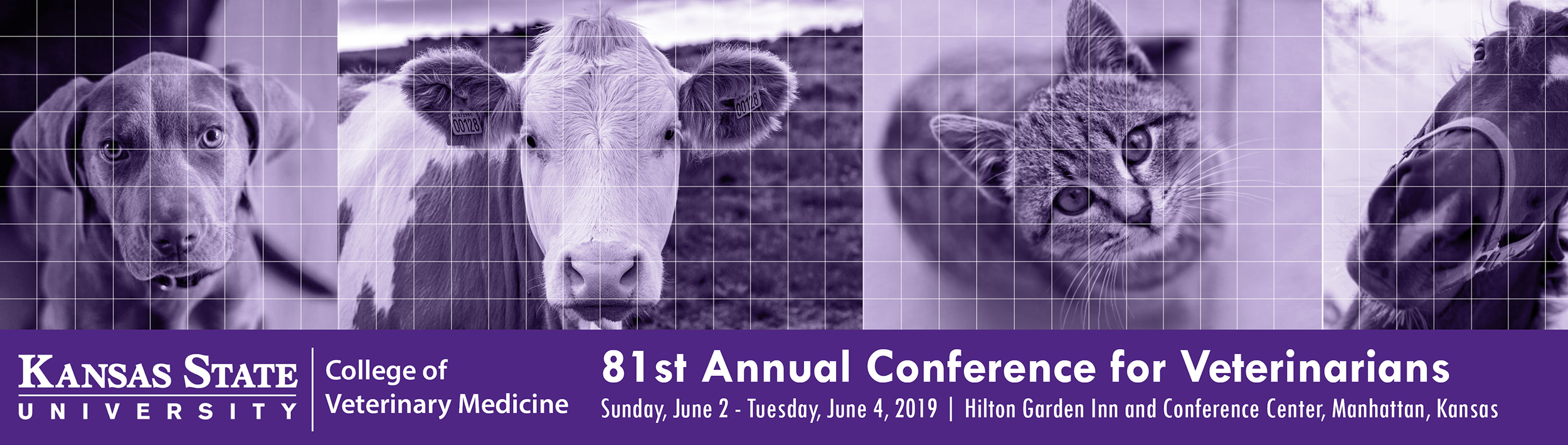 81st Annual Conference for Veterinarians