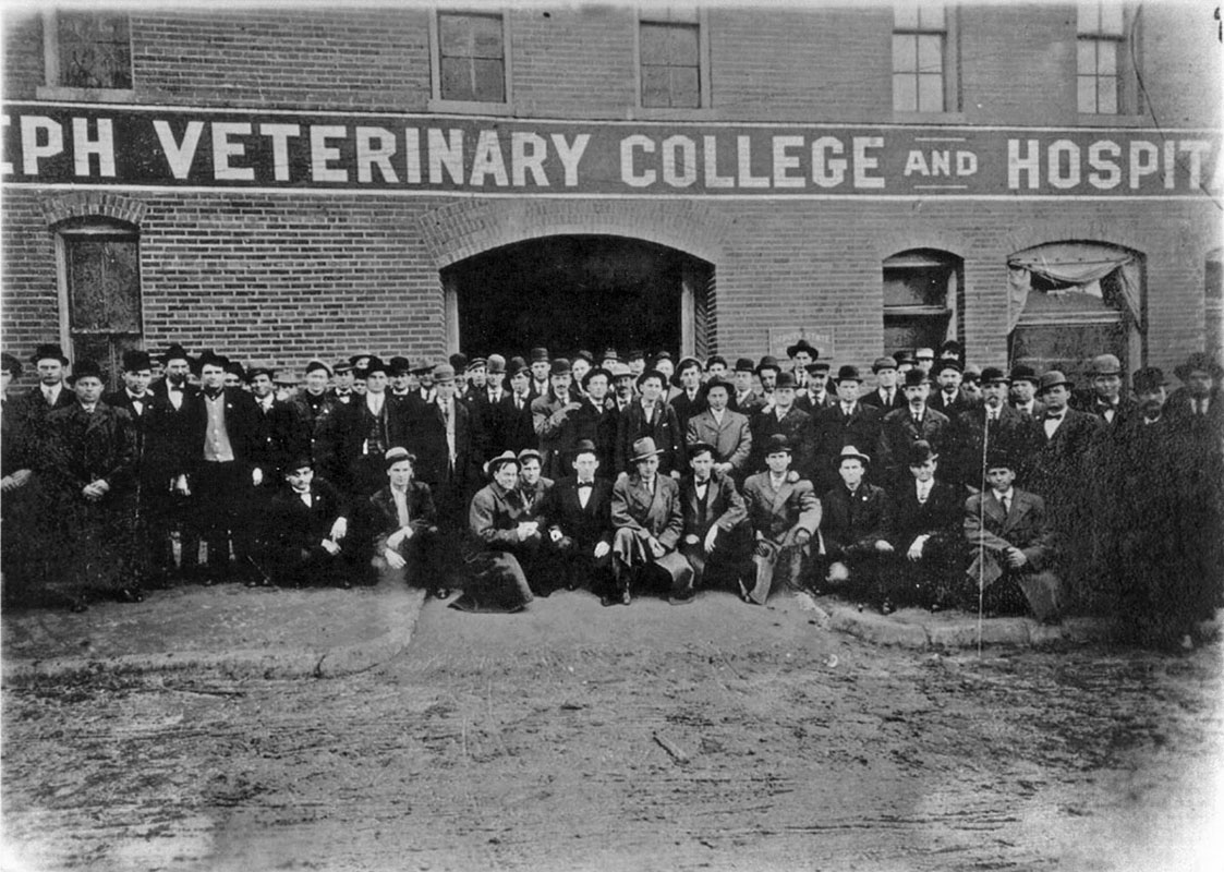 the history of veterinary medicine essay School of veterinary medicine, purdue university, west lafayette, in djw@vetpurdueedu the contents of the latest issues of veterinary heritage, bulletin of the american veterinary history society are.