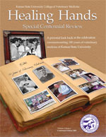 Healing Hands Centennial Review