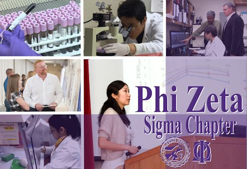 Student & faculty participants in research & Phi Zeta