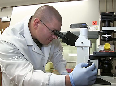 Dr. Philip Hardwidge at the microscope