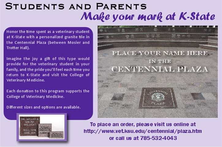 Centennial Plaza bricks ad