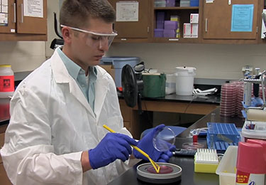 Dr. Charley Cull works on his Ph.D. in Dr. David Renter's lab.