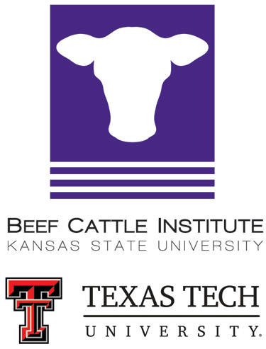 Beef Cattle Institute and Texas Tech logos