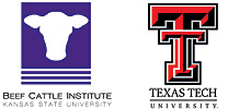 BCI and Texas Tech logos