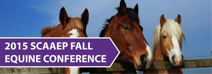 SCAAEP_Fall_Conference_header