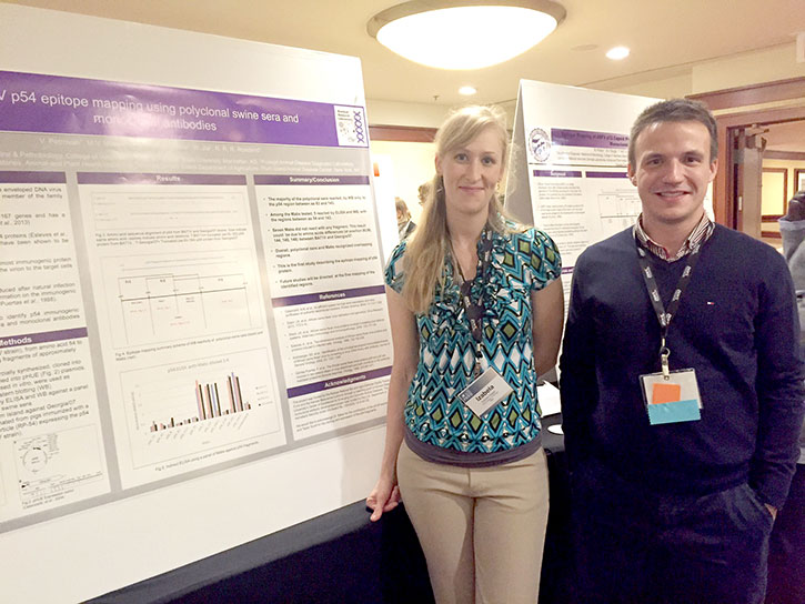 Graduate students Izabela Ragan and Vlad Petrovan present their research at the North American PRRS Symposium poster session.