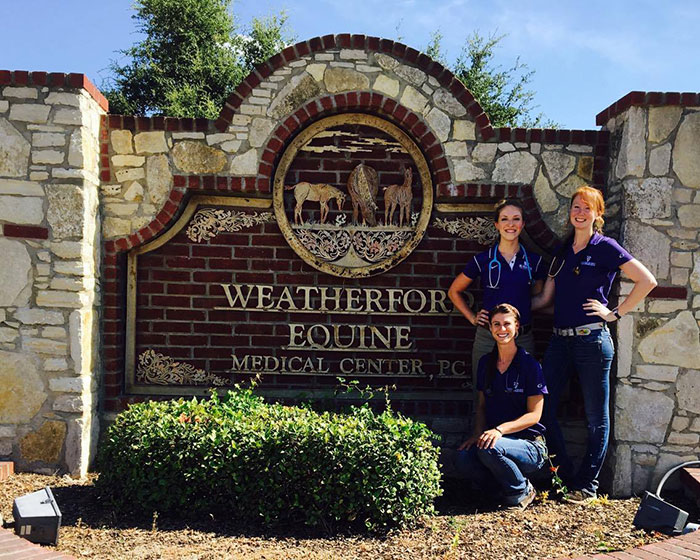 Weather Equine externship
