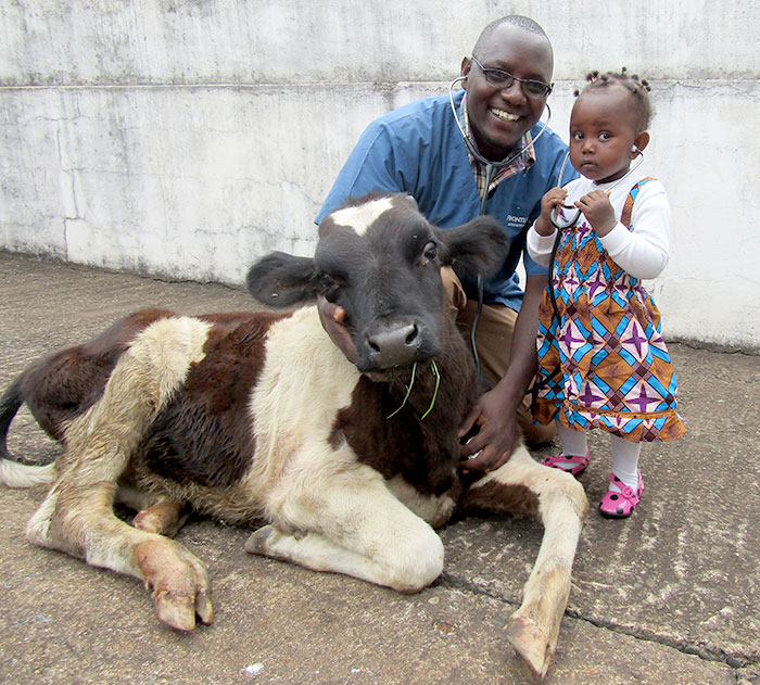 """Taking Charge of Our Future: A Vision for Veterinary Professionals"" by Peter Kimeli"