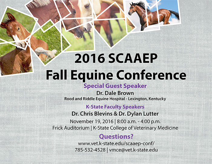 SCAAEP conference
