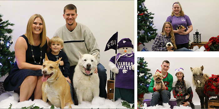 Christmas pets collage