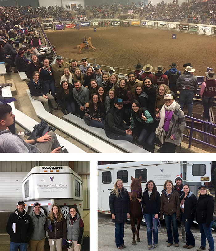 Equine Field Service at K-State Rodeo and EquiFest of Topeka