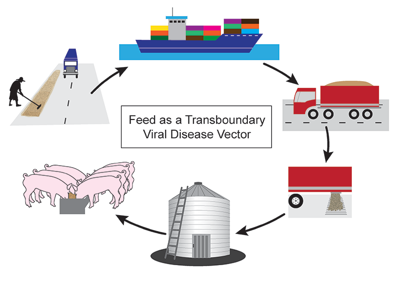 Feed as a viral vector graphic
