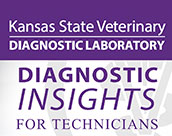 Diagnostic Insights for Technicians thumbnail