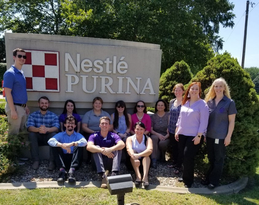 nestle group photo